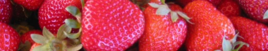 strawberry_header