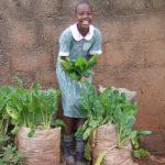 Sack-gardening Training